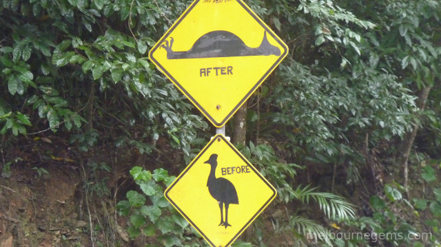 Far North Queensland Cassowary sign