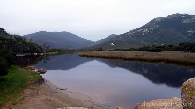 Quiet Tidal River